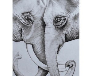 amazing, charcoal, and drawing image