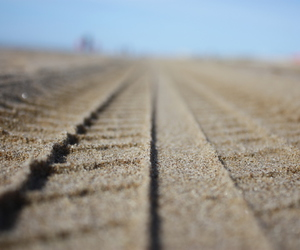 beach, holland, and katwijk image
