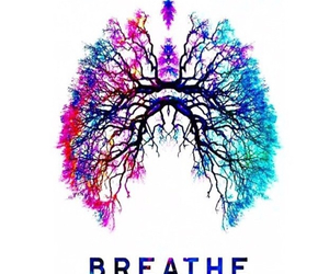 breathe, lungs, and tree image