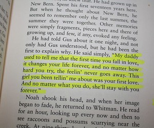love, quote, and book image