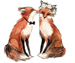 fox, cute, and love image
