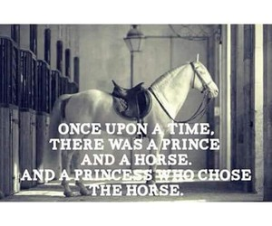 horse and prince image