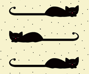 black, cats, and wallpapers image