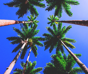 summer, sky, and wallpaper image