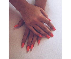 fashion, hands, and nails image