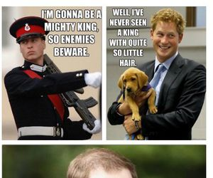 funny and royals image