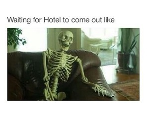 funny, ahs, and hotel image