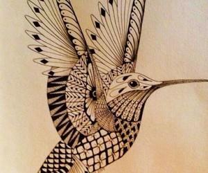 bird, drawing, and albanian image