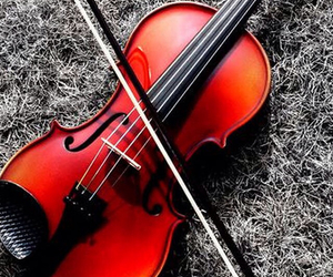 music, wallpapers, and violin image