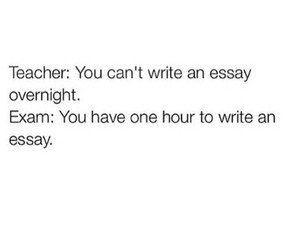 essay, exam, and funny image