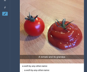 food, funny, and ketchup image