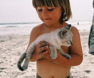 cute, beach, and boy image
