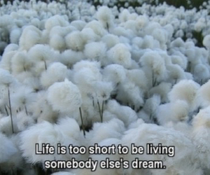 life, Dream, and quotes image