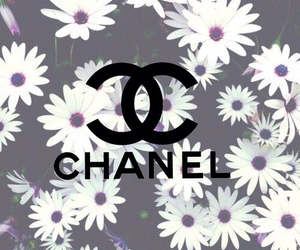 chanel, flowers, and background image