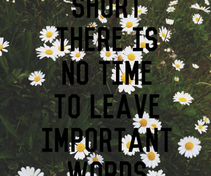 flowers, important, and life image