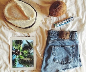 summer, coconut, and fashion image