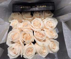 box, white, and roses image