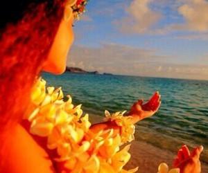 flowers, beach, and hawaii image