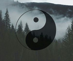 wallpaper, yin yang, and forest image