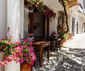 flowers, summer, and street image
