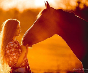 beautiful, equestrian, and girl image