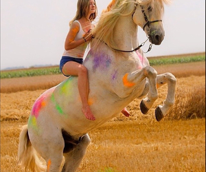 colors, horse, and friends image