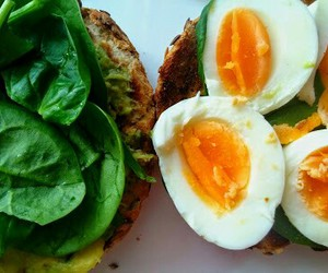 avocado, egg, and foodie image
