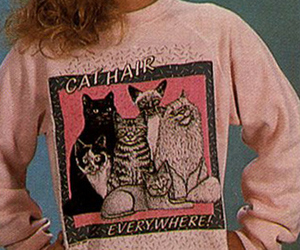 cat, cat hair, and 80s image