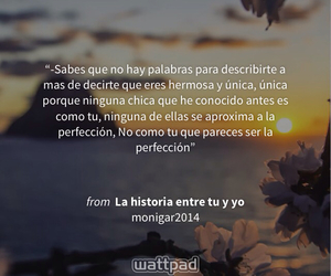amor, book, and frase image