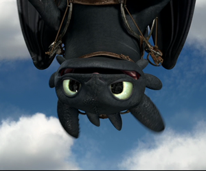 dragons, httyd, and hicccup image