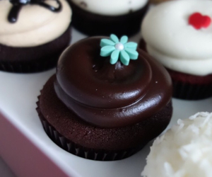 adorable, cupcakes, and food image