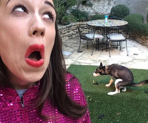 114 images about miranda sings on We Heart It | See more ...