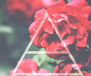 flowers, 30 seconds to mars, and triad image