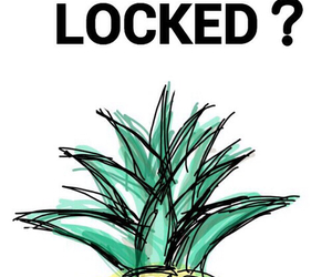 pineapple, wallpaper, and locked image
