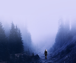 lonely, purple, and woods image