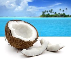 coconut, beach, and ocean image