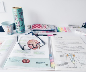 study, school, and notebook image
