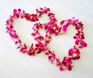 love, flowers, and heart image