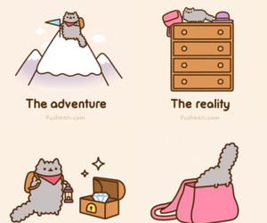 cat, reality, and pusheen image