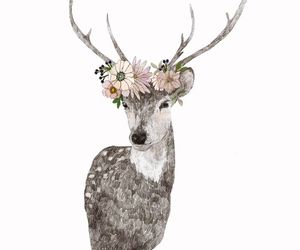 deer, drawing, and flowers image
