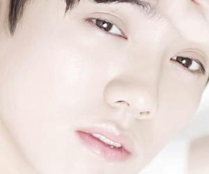 luhan, exo, and exom image