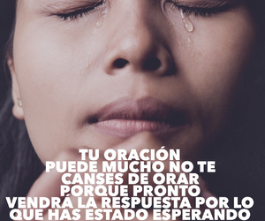 amor, frases, and backgrounds image