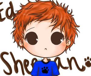 ed sheeran, cute, and ed image