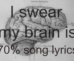 brain, Lyrics, and song image