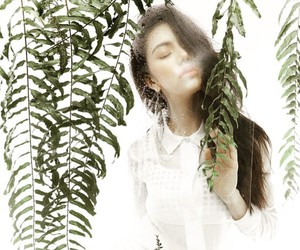 ferns, girl, and white image