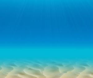 beautiful, ocean, and wallpaper image