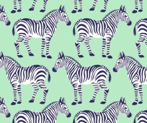 wallpaper, zebra, and background image