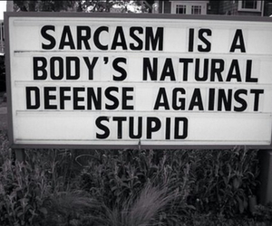 sarcasm, quotes, and stupid image