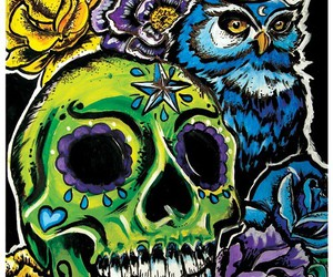 owl and skull image