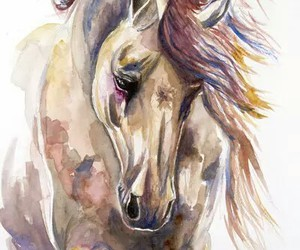 horse and watercolor image